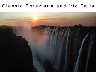 Classic Botswana and Victoria Falls Safari Vacation Package
