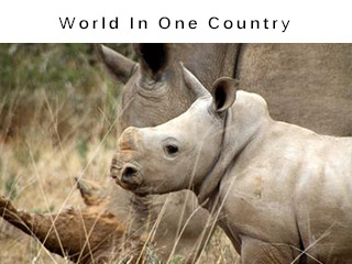 World in one country wildlife vacation package
